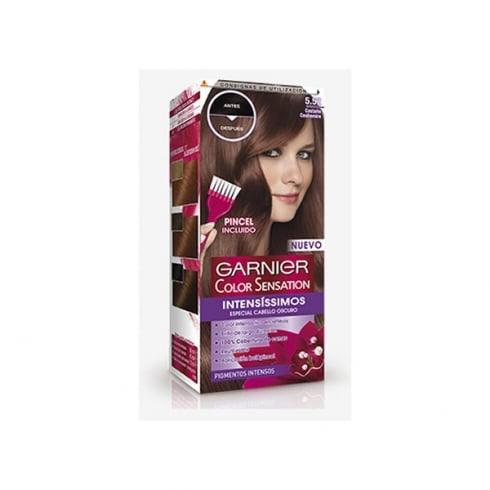 Garnier Color Sensation Intensissimos 5.52 Castaño Cashemire